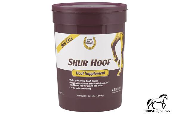 What Is a Hoof Supplement?